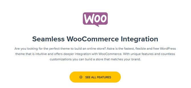 astra woocommerce integration