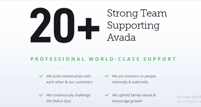 avada theme support
