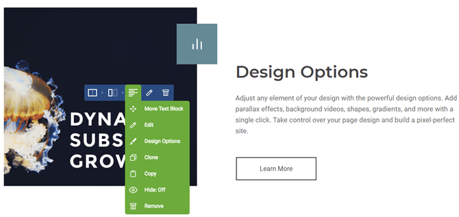 visual composer design options